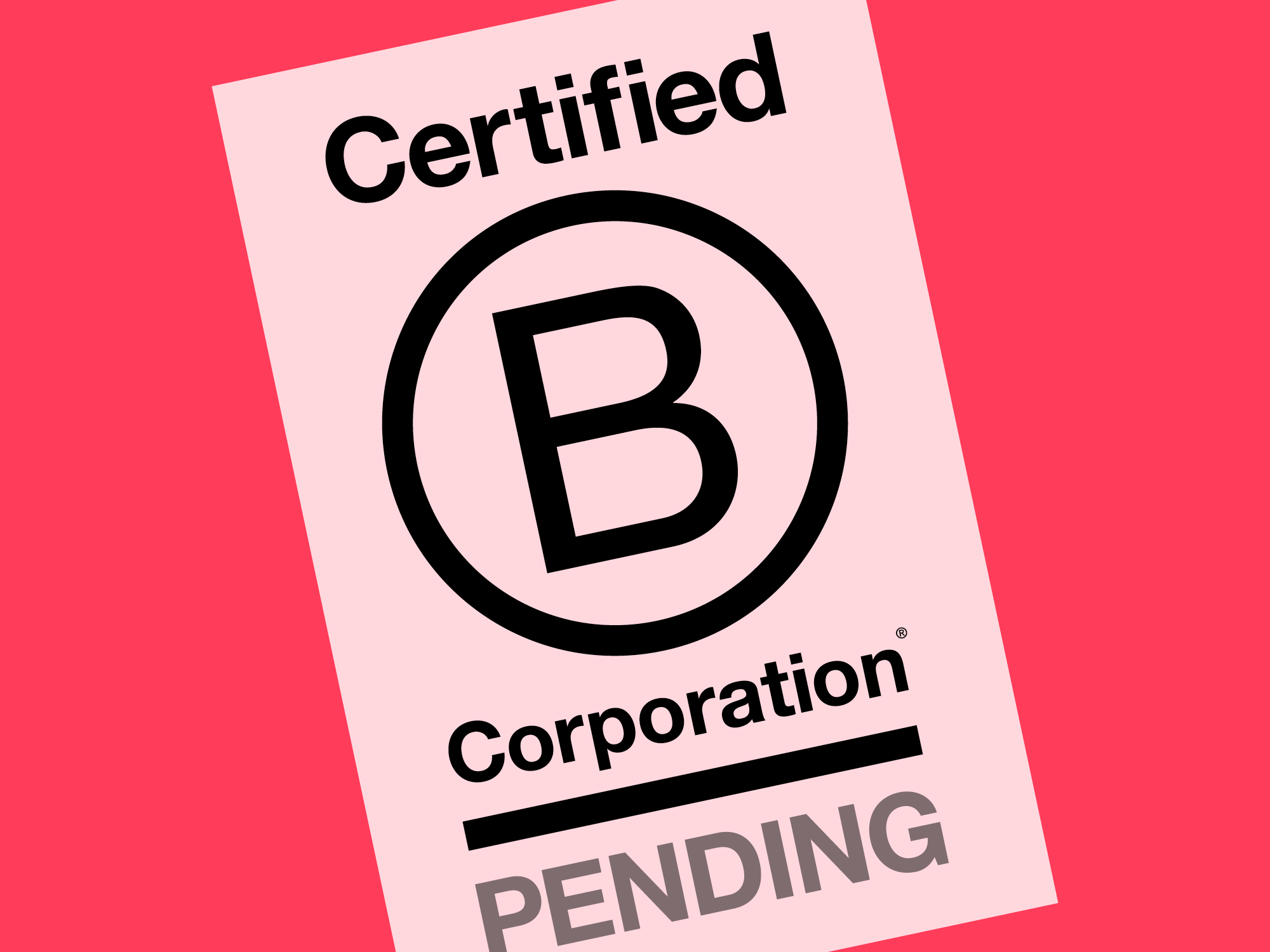 WHY REBEL ENERGY IS APPLYING FOR FULL B CORP CERTIFICATION